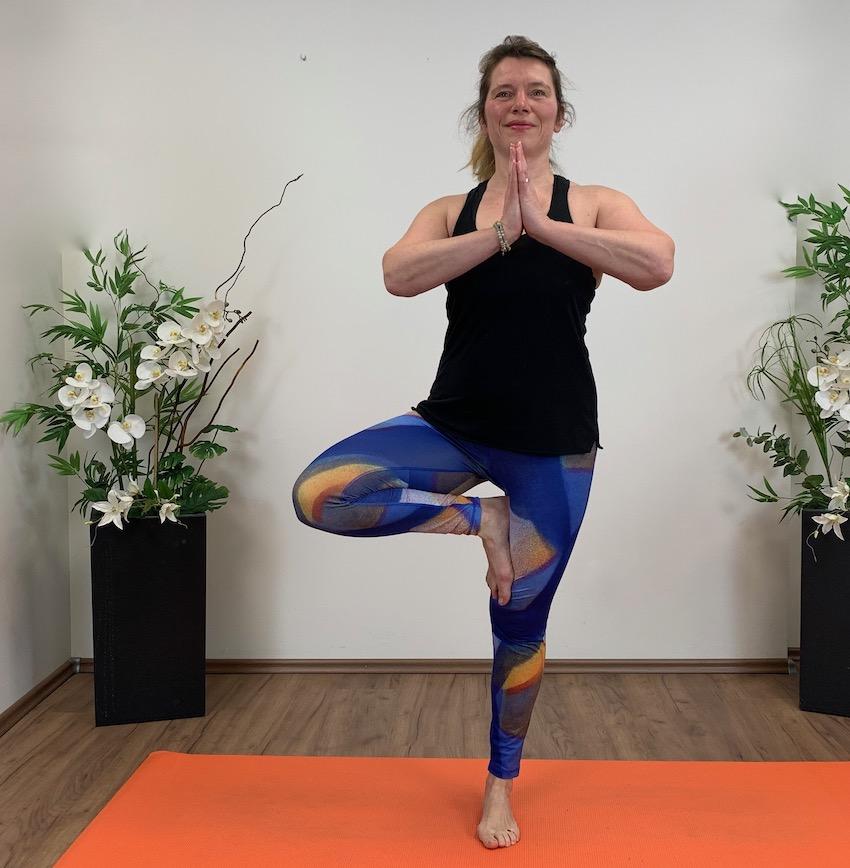 Iris Yoga Dossenheim Online-Kurse body-fit-balance